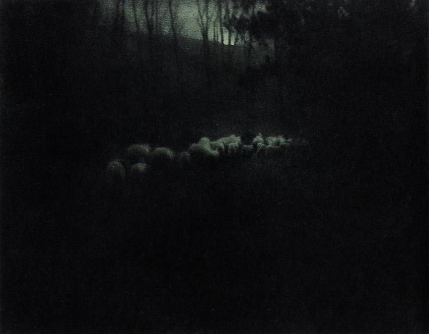 ysmf.Edward_Steichen-Pastoral