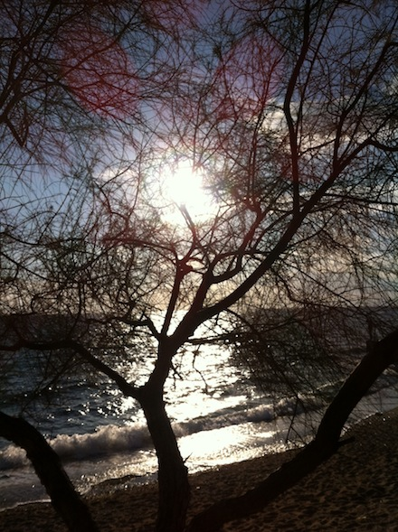 ysmf.faliro.beach