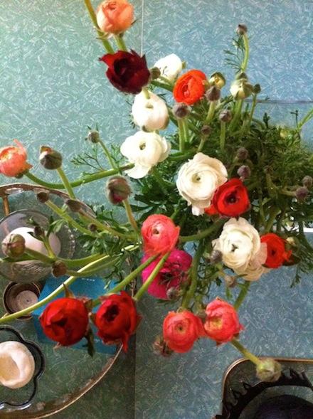 ysmf.spring.wild.flowers