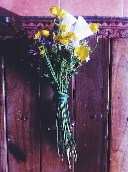 ysmf.belle.ile.en.mer.flowers