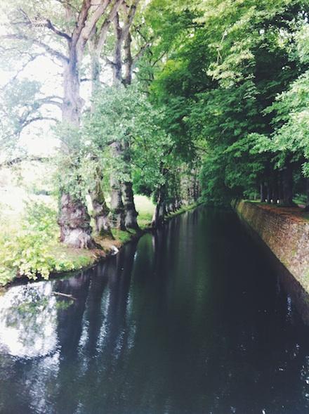 ysmf.chateau.chenonceau.loir.garden