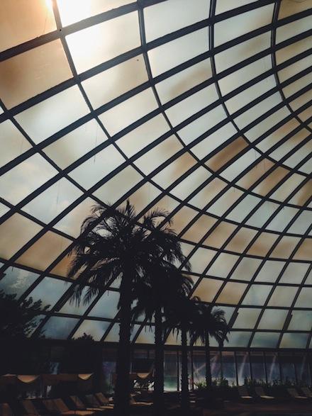 ysmf.dome.pool