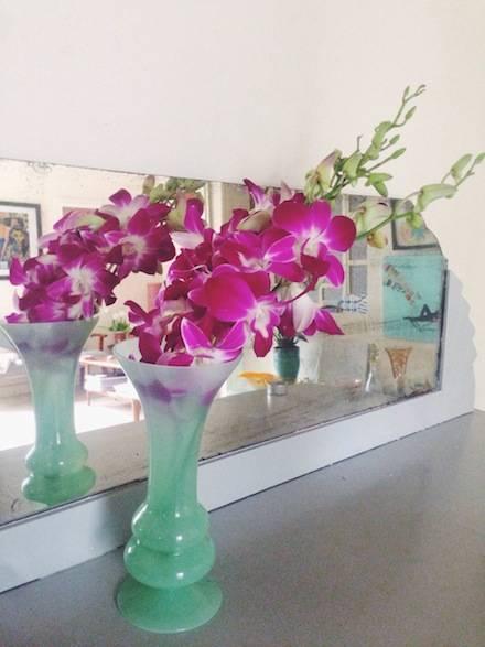 ysmf.fuchsia.orchid