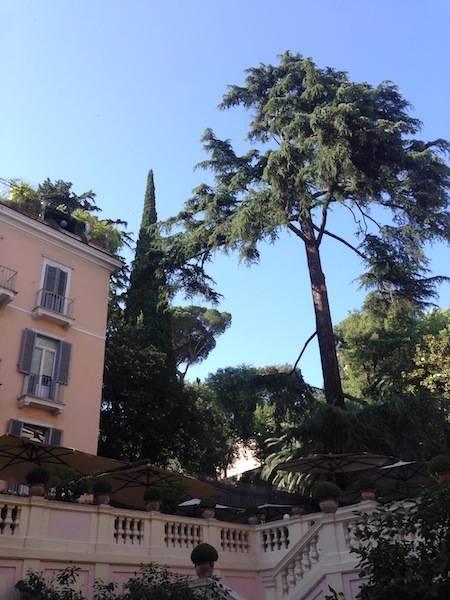 ysmf.hotel.de.russie.garden.rome